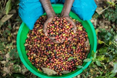 What to Expect from The African Coffee Experience